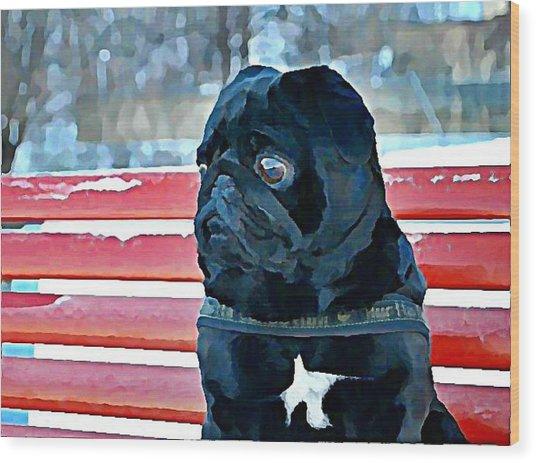 Pug In Deutschland Wood Print
