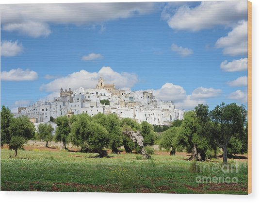Puglia White City Ostuni With Olive Trees Wood Print
