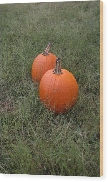Pumkin Couple Wood Print by Dennis Curry
