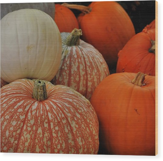 Pumpkin Colors Wood Print by JAMART Photography
