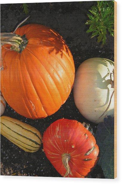 Pumpkin Wood Print by Heather Weikel