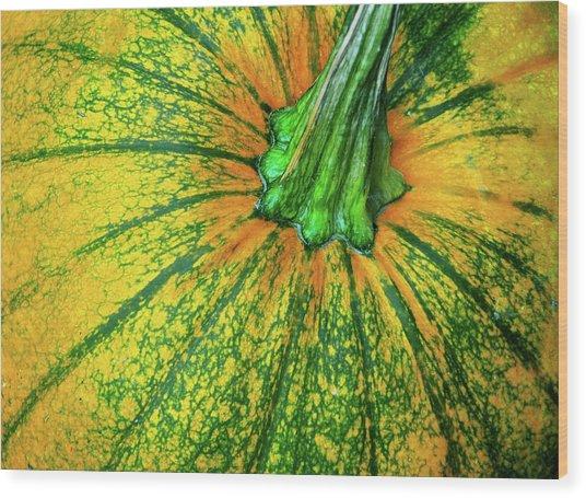 Pumpkin Season Wood Print by JAMART Photography