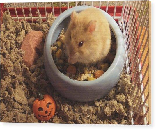 Pumpkin With Pumpkin Wood Print