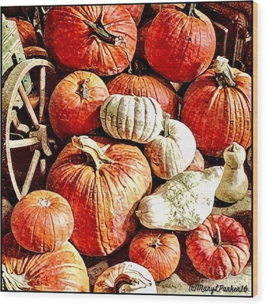 Pumpkins In The Barn Wood Print