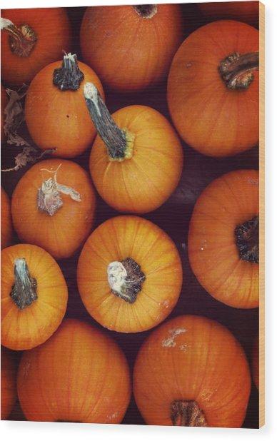 Pumpkins Wood Print by JAMART Photography
