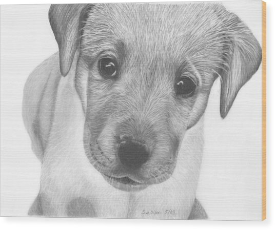 Pup Wood Print by Sue Olson