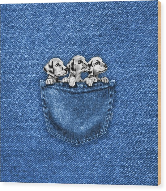 Puppies In A Pocket Wood Print