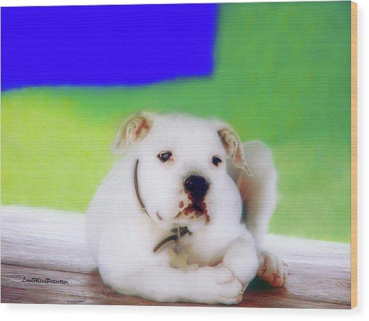 Puppy Art 2 Wood Print