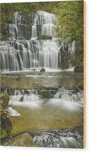 Purakanui Falls Wood Print by Andrea Cadwallader