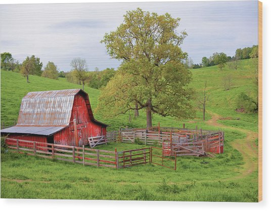 Pure Arkansas - Red Barn Wood Print