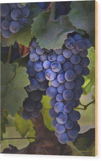 Purple Blush Wood Print