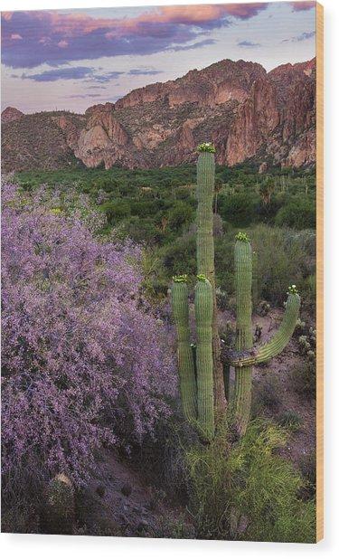 Purple Desert Beauty Wood Print