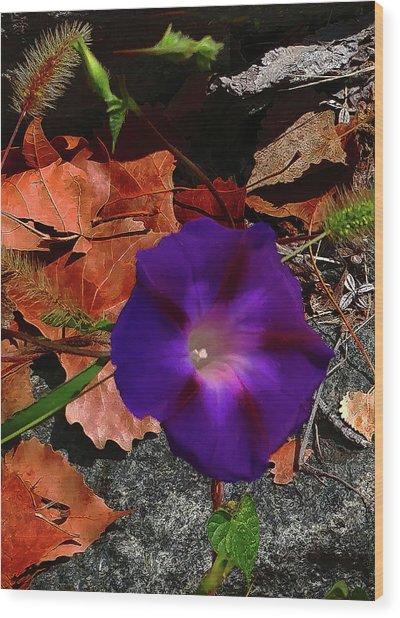 Purple Flower Autumn Leaves Wood Print