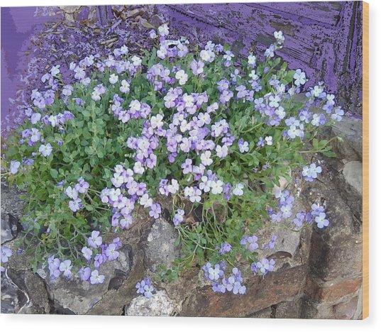 Purple Flower Textured Photo 1028b Wood Print
