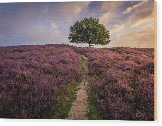 Purple Hill Wood Print