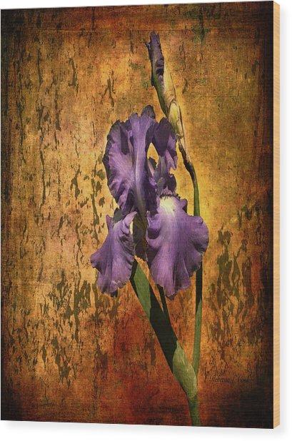 Purple Iris At Sunset Wood Print