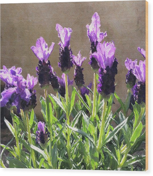 Wood Print featuring the digital art Purple by Julian Perry