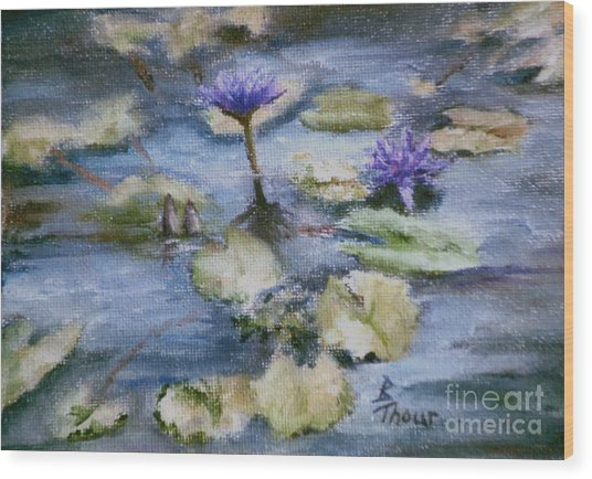 Purple Lily Wood Print by Brenda Thour