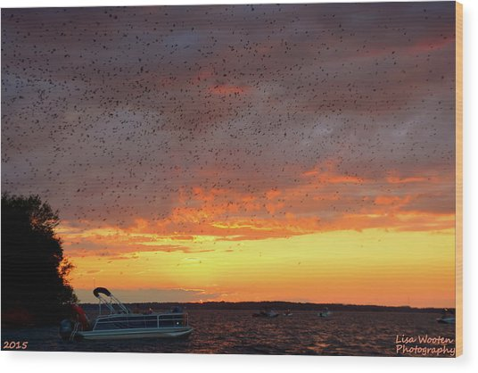 Purple Martin Sunset On Lake Murray Sc Wood Print
