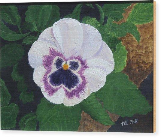 Purple Pansy Wood Print by Philip Hall