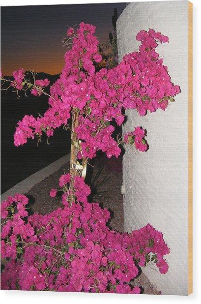 Purple Passion Against Desert Sunset Wood Print