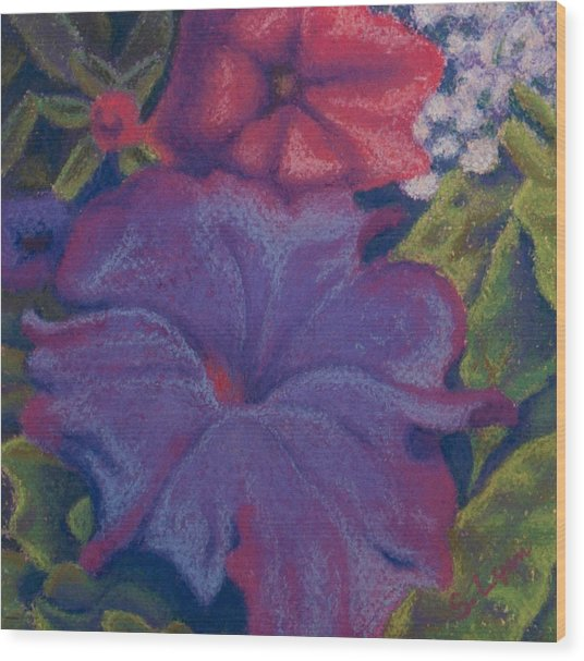 Purple Petunia Wood Print