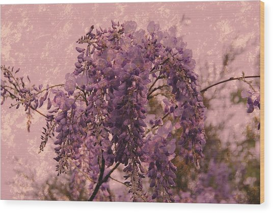 Purple Pleasures Wood Print