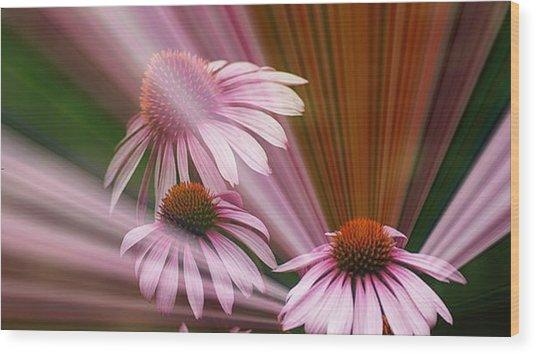 Purple Radiance Wood Print