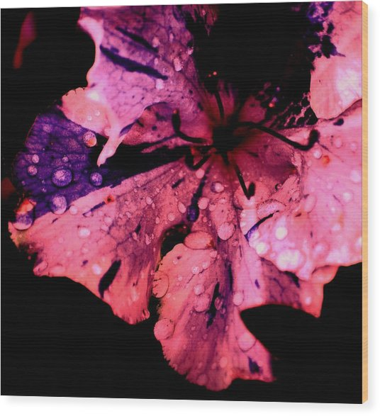 Purple Rain Wood Print by Trudi Southerland
