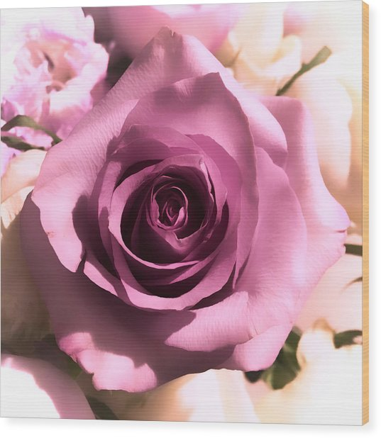 Purple Rose Wood Print