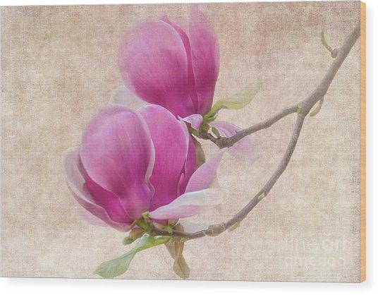 Purple Tulip Magnolia Wood Print
