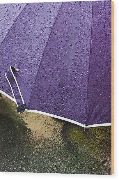 Purple Umbrella Wood Print by Marion McCristall