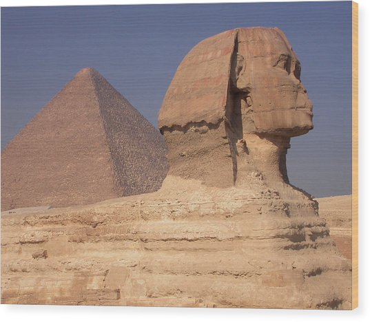 Pyramid And Sphinx Wood Print by Mary Lane