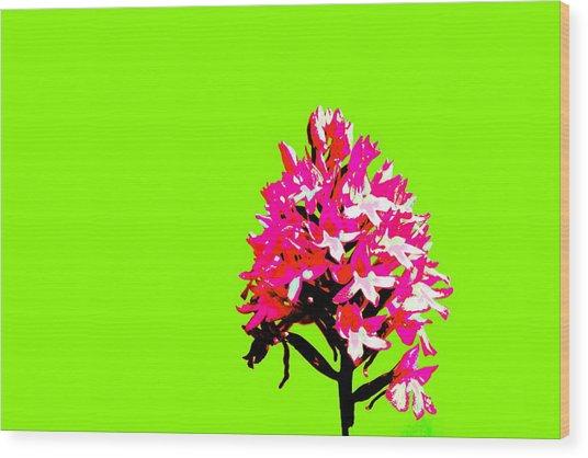 Green Pyramid Orchid Wood Print