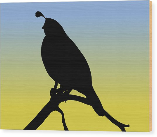 Quail Silhouette At Sunrise Wood Print