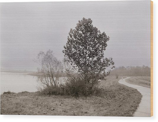 Quarry Lake Wood Print