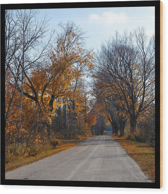 Quarterline Road Wood Print