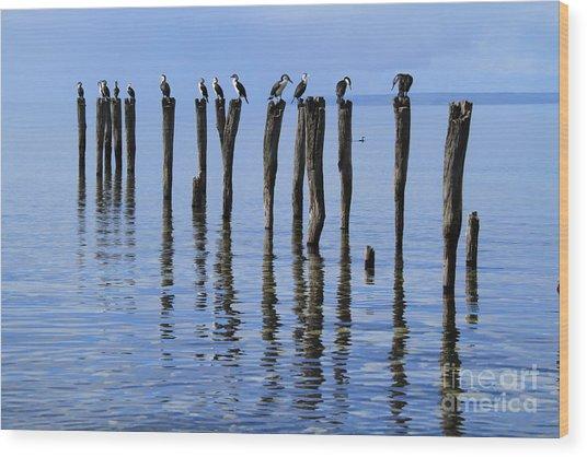 Quay Rest Wood Print