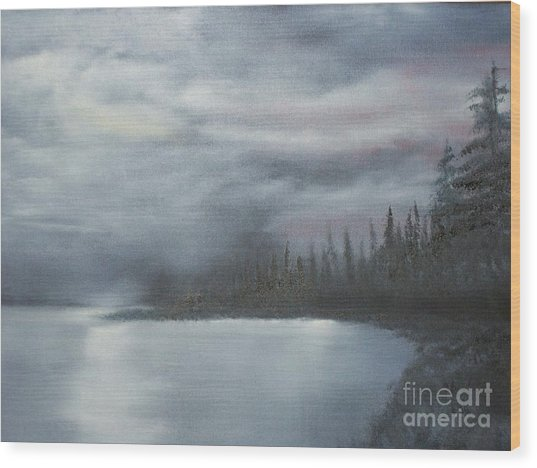 Quiet Cove Wood Print by Shawn Cooper