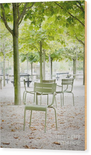 Quiet Moment At Jardin Luxembourg Wood Print
