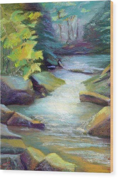 Quiet Stream Wood Print by Melanie Miller Longshore
