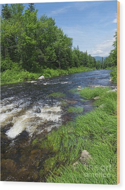 Quill Pond Brook Near Rangeley Maine  -70748 Wood Print
