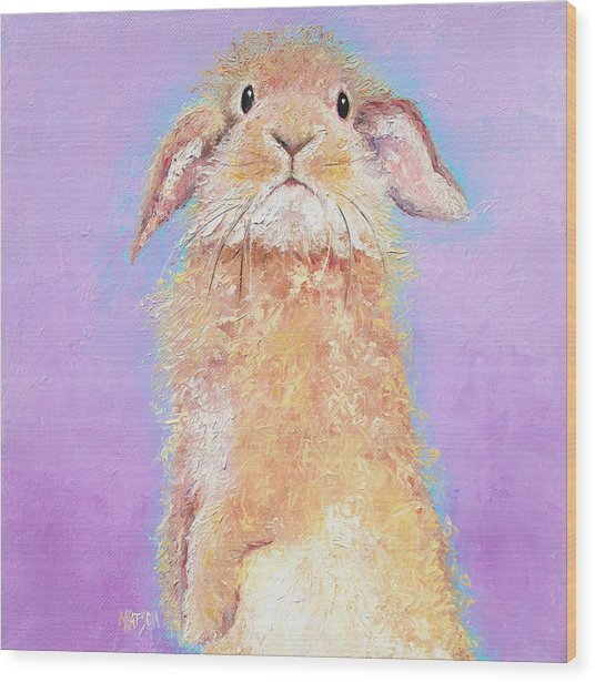 Rabbit Painting - Babu Wood Print
