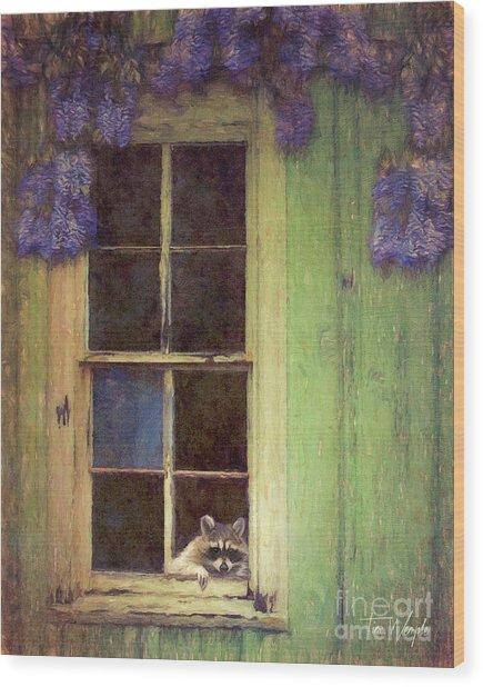 Raccoon Window Wood Print by Tim Wemple
