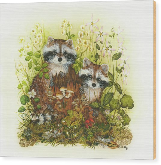 Raccoons  Wood Print by Donna Genovese