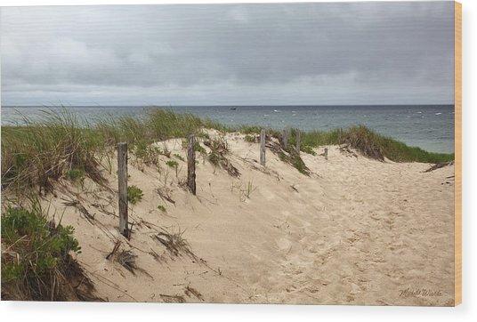 Race Point Beach Provincetown Massachusetts Wood Print