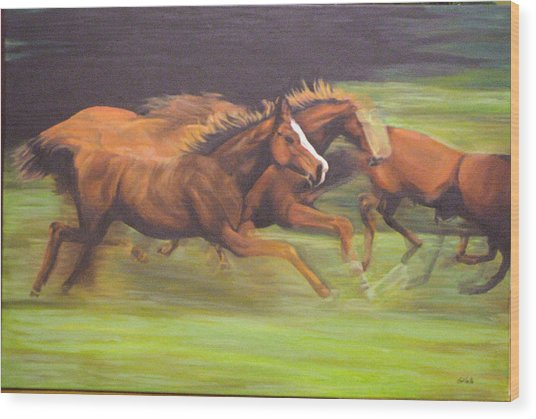 Racing Horses Wood Print by Srilata Ranganathan