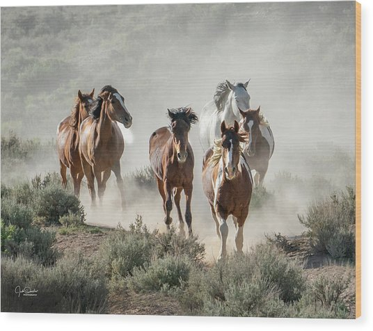 Racing To The Water Hole Wood Print
