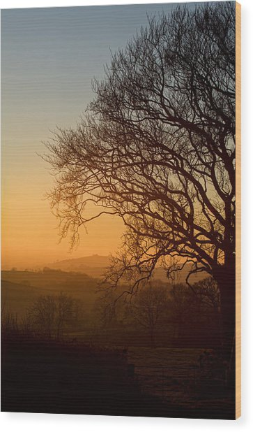 Raddon Hill At Sunset Wood Print