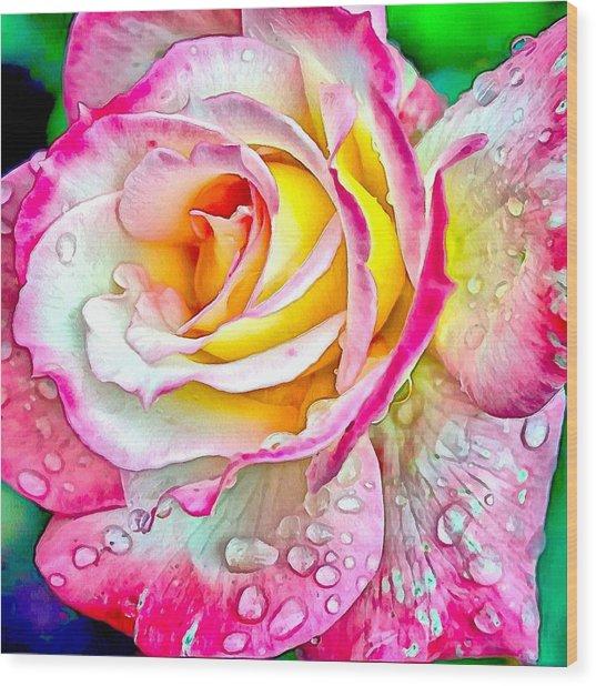 Radiant Rose Of Peace Wood Print
